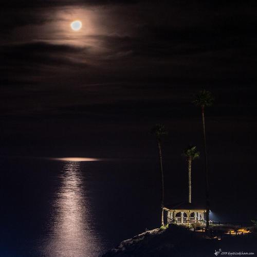 moonlit pch